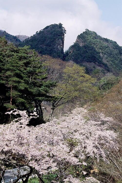 佐渡金銀山の中でも初期に採掘されはじめた露天掘り場。金脈を掘り進むうちに山は割れたようになった。「道遊の割戸」と呼ばれている。
